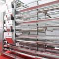 Système de cage de poulet à volailles avec système d'alimentation automatique