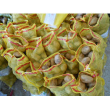 2015crop Frische Holland Kartoffel (80-150g)