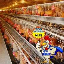 3 layer chicken egg layer cages for poultry farm