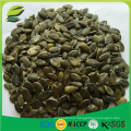 2016 cosecha semillas de calabaza estándar de la UE