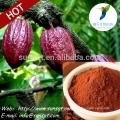 Горячие новые продукты для 2015 какао порошок цена выпадение волос обработка какао theobroma л.