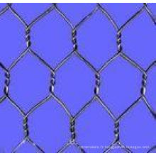 Electric / Hot-DIP Galvanizedwire Mesh Fence (chaînette)