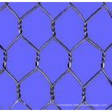 Chicken Mesh (hot dipped galvanized)