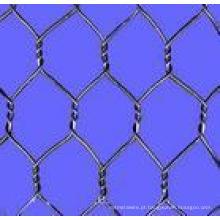 Electric / Hot-DIP Galvanizedwire Mesh Fence (link de corrente)
