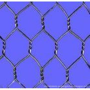 Electric / Hot-DIP Valla de malla galvanizada (enlace de cadena)