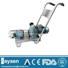 Sanitary rotary lobe pumps with motor