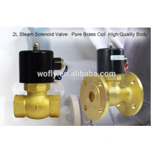 1/2'' 1'' 2'' high temperature brass steam mini solenoid valve coil in China
