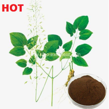 China Manufacturers for Anti Cancer Horny goat weed extract Epimedium extract export to Uganda Manufacturer