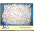 Hot Sale Pink Shrimps PD shirmp