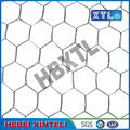 Chicken Wire Mesh for Plastering