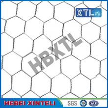 10 Years for China factory of Waterproof Wire Mesh, Hexagonal Wire Mesh, Welded Wire Netting, Welded Wire Mesh, Wire Mesh Fence Panel, Square Wire Mesh Chicken Wire Mesh for Plastering supply to Russian Federation Manufacturers