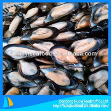 Venda quente excelente nova pesca congelada meia shell mexilhão