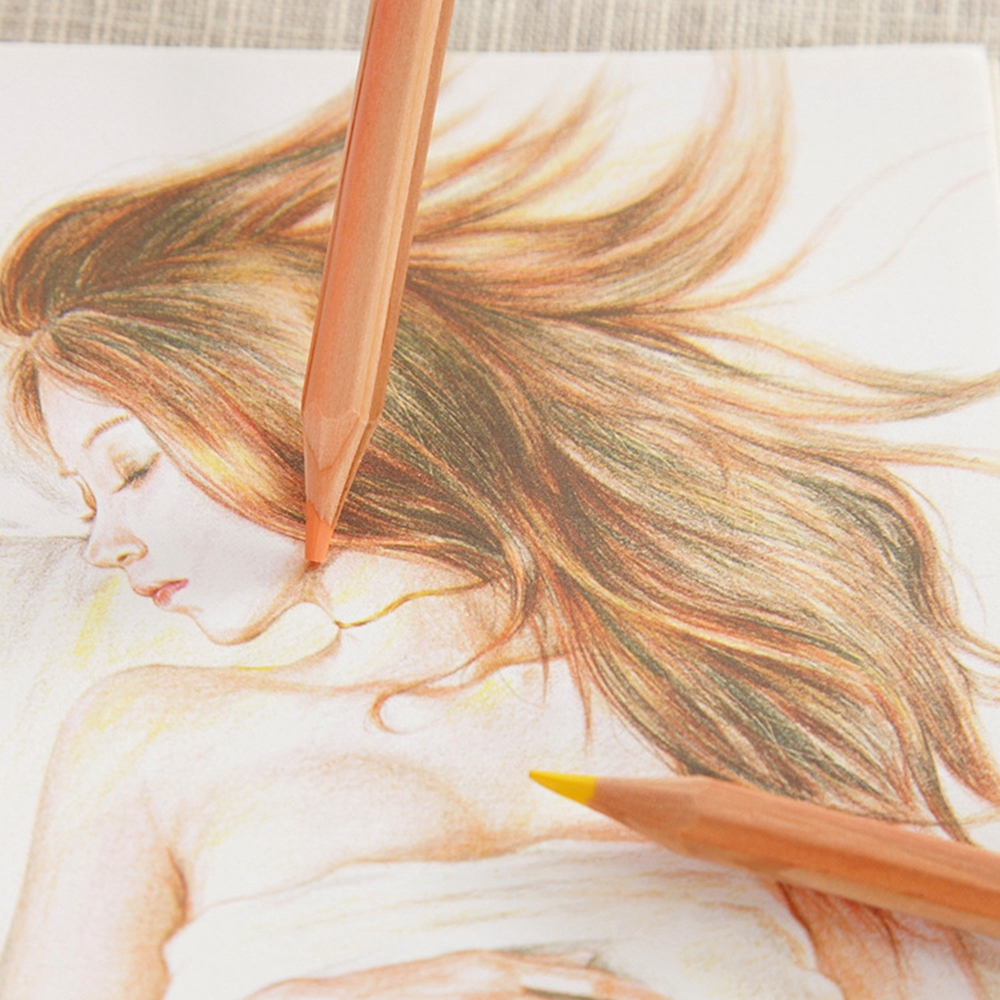 36 Colors High Quality Colored Pencil