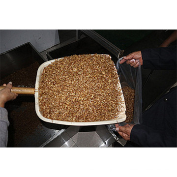 Dried Mealworm Powder Protein Powder Insect