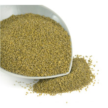 New Corp Hot Sale MP Green Millet In Husk para pájaro
