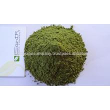 Dehydrated Moringa leaf powder
