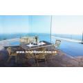 Aluminio y PE Rattan Muebles de mimbre al aire libre Bp-3023c