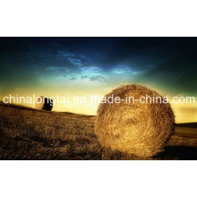 Factory Direct Sale of Plastic Twine Grass Straw Twine