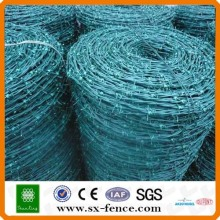 Galvanized & PVC coated Barbed Wire