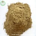 Repas À Haute Protéine De Poisson Superbe Qualité