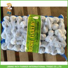 Поставка и экспорт 2015 новых культур свежий чеснок, натуральный чеснок, очищенный чеснок, Шаньдун чеснок