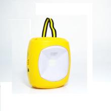 6V Ebst-D08d Portable Solar Camping Light