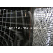 Hot Dipped Galvanized Welded Wire Mesh, Square Wire Mesh, China Wholesale Galvanized Hexagonal Wire Mesh