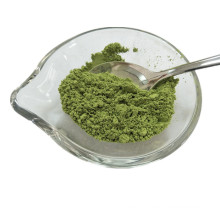 New Crop Dehydrated Vegetable Spinach Powder