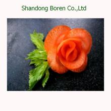 2015 Nuevos vegetales chinos Nuevos cultivos Zanahoria fresca