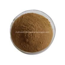 ginkgo biloba leaf extract ginkgo biloba
