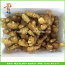 Fresh Ginger Exporter Chinese Ginger 250g up 13.6kg PVC box to USA