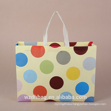 2017 New Promotional PP Non-Woven Bag ,Nonwoven Bag For Shopping ,Reusable Non Woven Bag