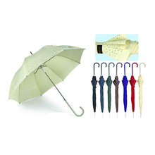 Border Print gerade automatische Vogelkäfig Regenschirm (YS-SA23083919R)