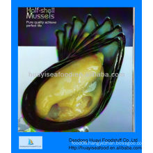 Frozen boiled mussel meat