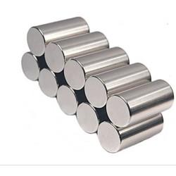 Cylinder Sintered Neo Magnet