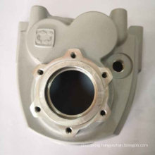 Popularly Durable Painting Spray Parts Die Casting Engine Cover
