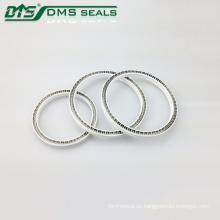 DMS-Teflon-Lippendichtung Teflon PTFE-Federdichtung