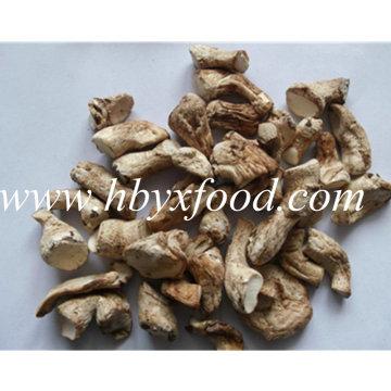 Hohe Ernährung Getrocknete Bio Natürliche Shiitake Pilz Vorbau