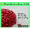 Carefully Selected Ningxia Healthy Goji Berry/Wolfberry with Reasonable Price