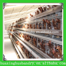 China manufacturer of bird trap cage for chicken birds shed