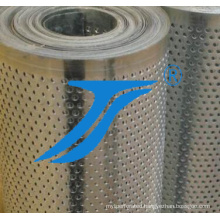 Stainless Steel Perforated Metal (for Filter)
