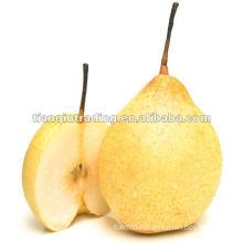 2012 New Crop Ya Pear