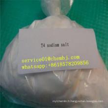T4 L-Thyroxine / Lévothyroxine Sodium / T4 51-48-9 Brûleur de graisse efficace