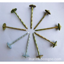 Roofing Nails / Concrete Nail with Washer /Galvanized Shooting Nail