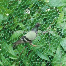 Hochwertiges Fangnetz, um Vögel zu konkurrenzfähigen Preisen zu fangen