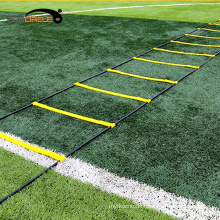 Procircle Sport Training Faltbare Geschwindigkeit Agility Ladder
