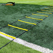 Escada dobrável da agilidade da velocidade do treinamento dos esportes de Procircle