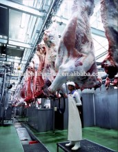 Food Import Export Company in Shanghai