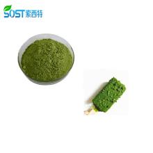 500-5000 Mesh Japanese Organic Green Matcha Tea Powder