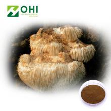 Hericium Erinaceus Extrato Polissacarídeos Fungos